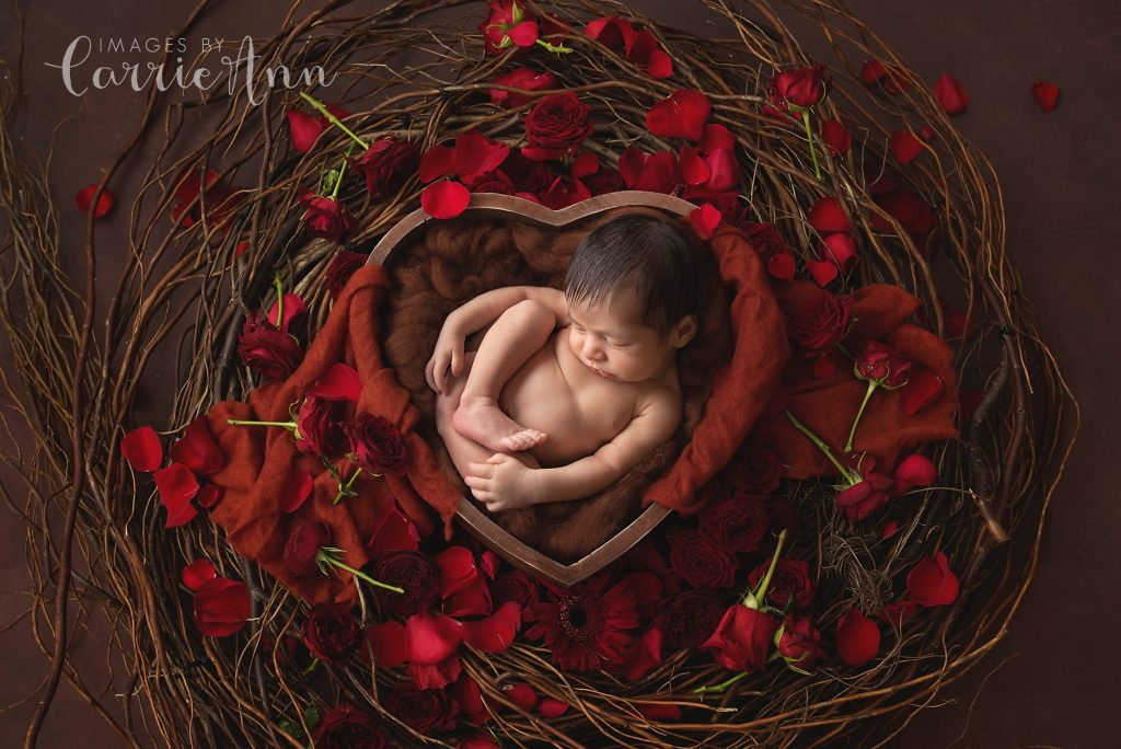 newborn in bowl with red roses