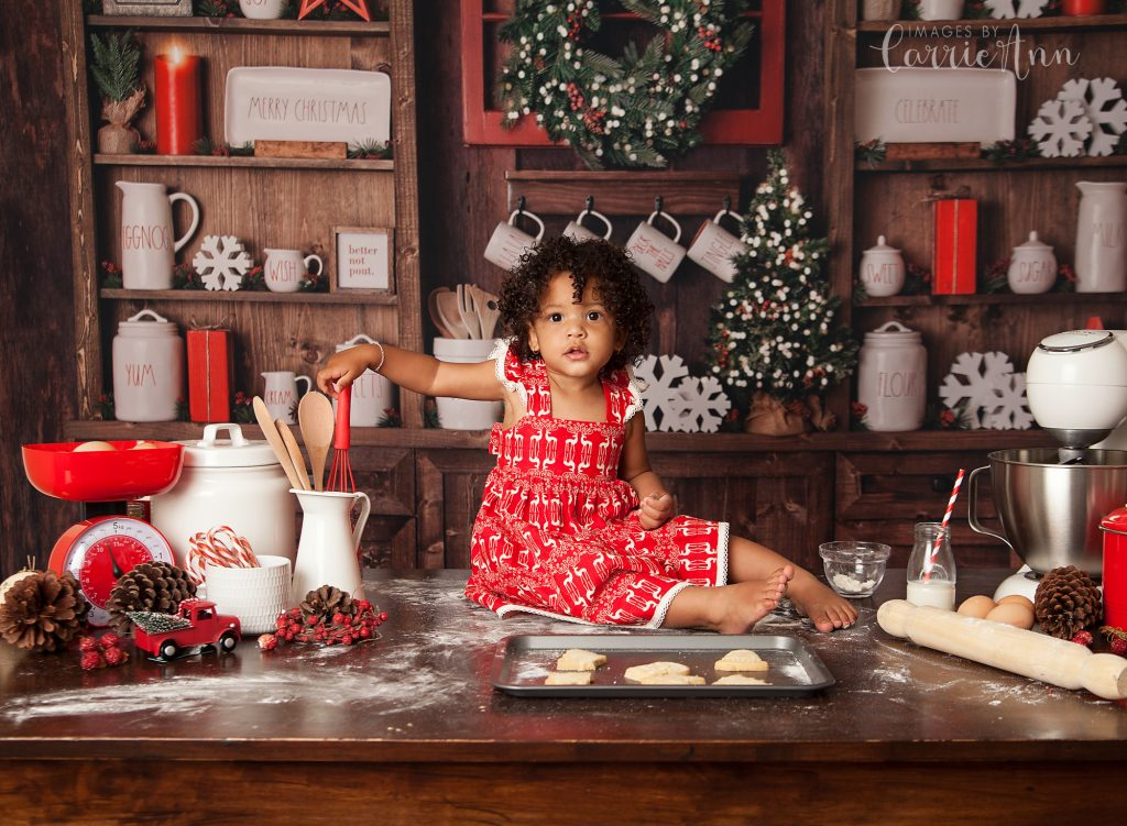 1 year old girl in Christmas mini session